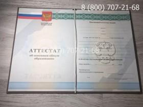 Аттестат 9 класс 2010-2013 года фото1