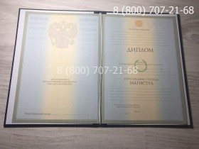 Диплом магистра 2004-2009 года фото 1