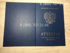 Аттестат 11 класс 2007-2009 года 3