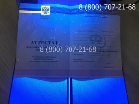 Аттестат 11 класс 2010-2013 года 7