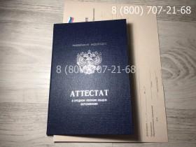 Аттестат 11 класс 2010-2013 года 4