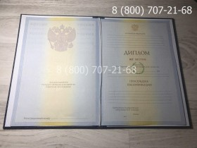 Диплом специалиста 2009-2010 года фото 1