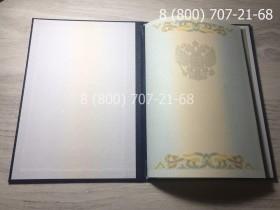Диплом магистра 1997-2003 года 2