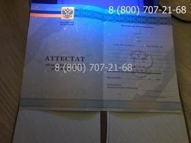 Аттестат 9 класс 2010-2013 года 7