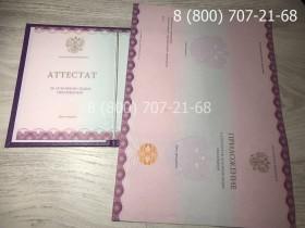 Аттестат 9 класс 2014-2019 года 3
