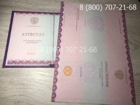 Аттестат 9 класс 2014-2019 года-3